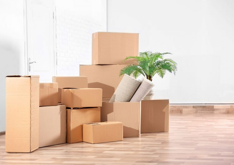 terry lige moving boxes